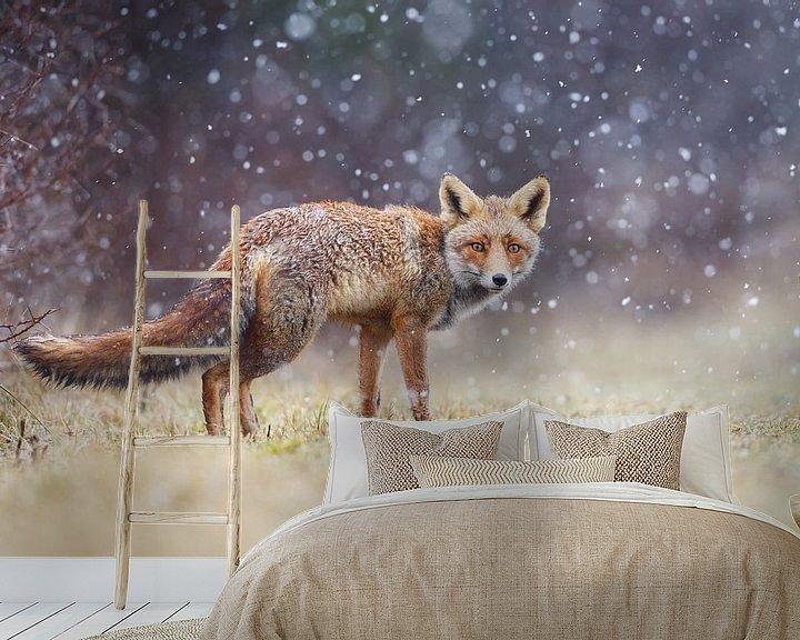 Sfeerimpressie behang: Rode vos in de sneeuw van Pim Leijen