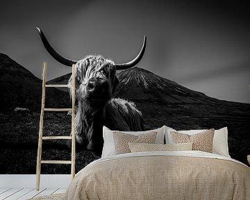 Schotse Hooglander in zwart-wit van Niels Eric Fotografie