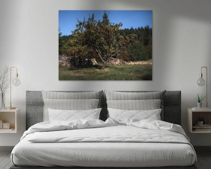 Sfeerimpressie: Allein stehender Apfelbaum auf dem Weg zum Hamburger Wappen van Dirk Bartschat