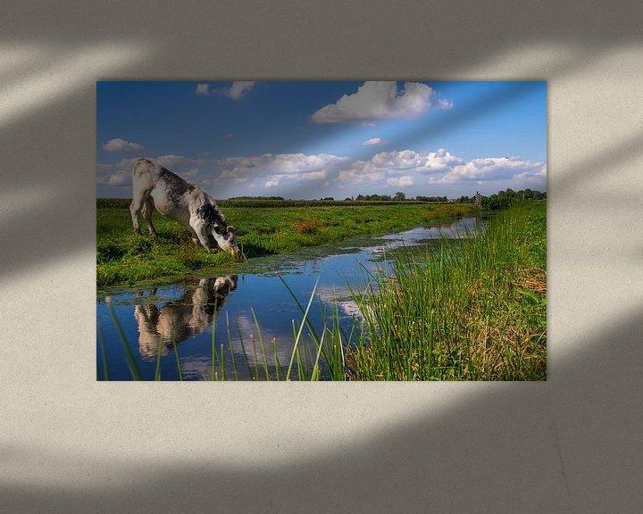 Sfeerimpressie: Koe weerspiegeling van Brigitte Alphenaar