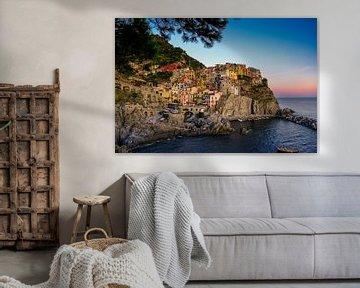 Manarola (Cinque Terre) van Cees van Miert