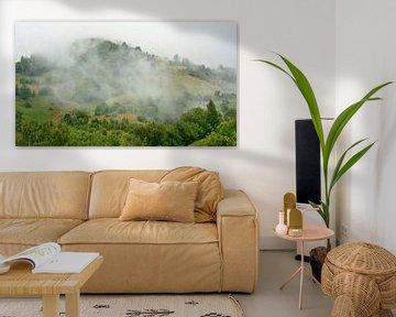 Mist in de bergen van Transylvanie von Kristof Lauwers