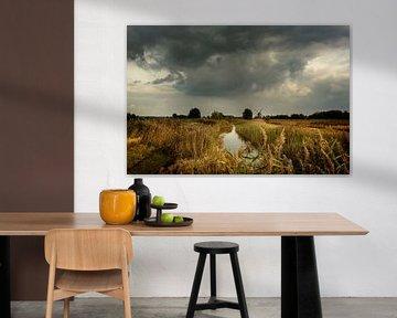 Herbst in Groningen von Bo Scheeringa Photography
