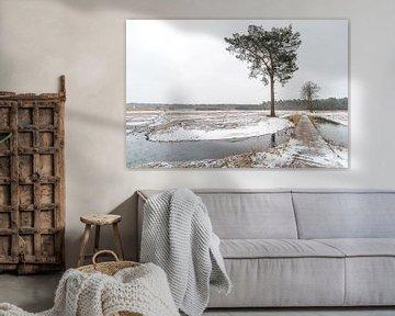 Winters landschap van Gonnie van de Schans