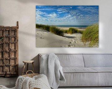 Strand von Renesse
