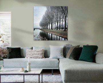 Winter Wonder Land van Niels Krommenhoek