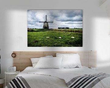 Holländische Windmühle - Schaafe im Vordergrund von Emel Malms