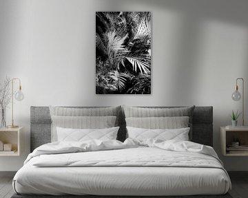 wild palm tree von Dorit Fuhg