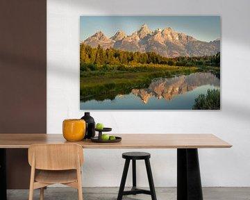 Grand Teton reflectie #2 van Edwin Mooijaart