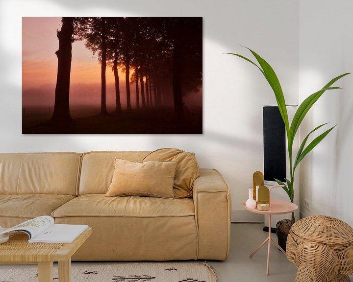 Sfeerimpressie: Boomsilhouetten in de mist tijdens zonsopkomst. van Sran Vld Fotografie