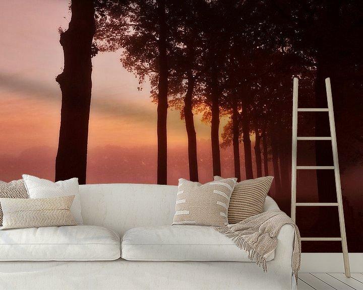 Sfeerimpressie behang: Boomsilhouetten in de mist tijdens zonsopkomst. van Sran Vld Fotografie