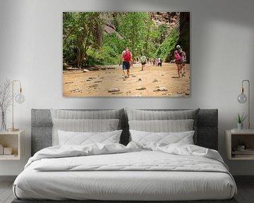 Zion Nationaal park rivier wandeling van Ton Tolboom