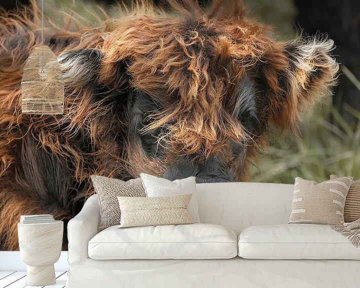 Sfeerimpressie behang: Schotse hooglander kalfje van Carla van Zomeren