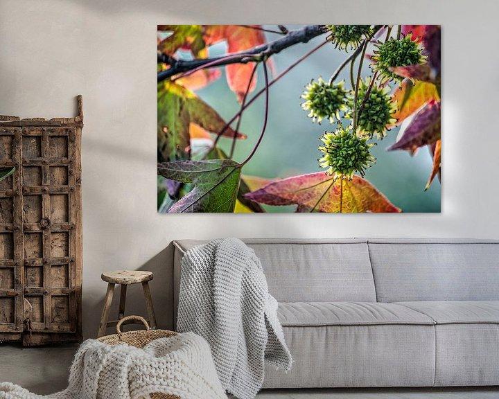 Sfeerimpressie: De kleuren van de amberboom van Frans Blok