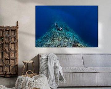 Freediver boven het zadel van Blue Hole bij Dahab van Eric van Riet Paap