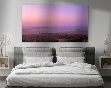 Posbank rose et violet sunrise van Gea Gaetani d'Aragona