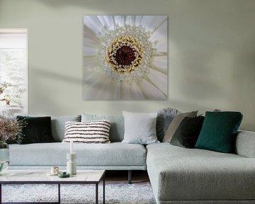 Symmetrische Blume. von Rijk van de Kaa