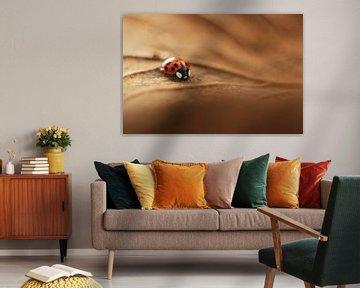 Little Ladybug van Michelle Zwakhalen