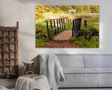 Kleine Brücke in der schönen Landschaft nahe Vorden, Gelderland von Jaimy Buunk