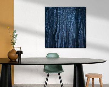 Abstract Speulderbos vierkant van Vincent Fennis