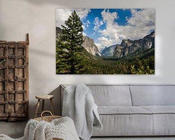 Yosemite, Californië van Pauline Paul
