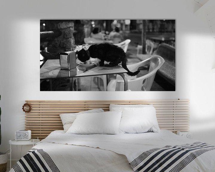 Beispiel: Katze in Malaga Südspanien von Rob van Dam