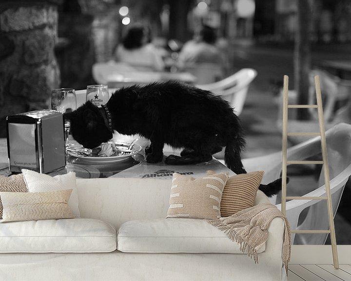 Beispiel fototapete: Katze in Malaga Südspanien von Rob van Dam