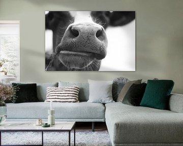 Typische niederländische Kuh von Rob van Dam