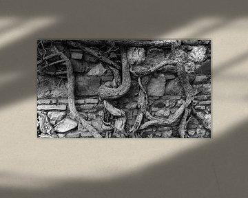 Muur in Malaga von Rob van Dam