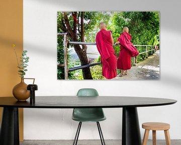 twee jongen moniken van Martin Smit