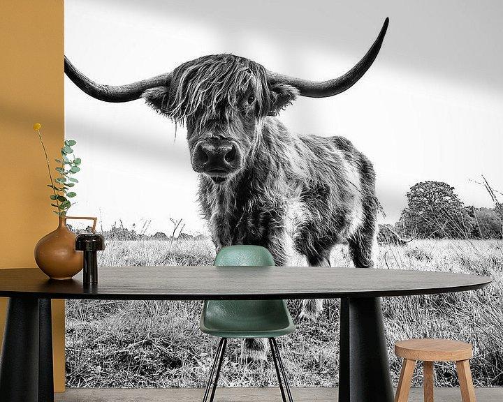 Beispiel fototapete: Schotse Hooglander op de Jiltdijksheide in grijstinten von Martijn van Dellen