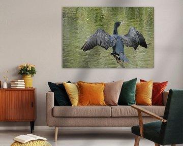 Spreid de Vleugels von Sven Struik