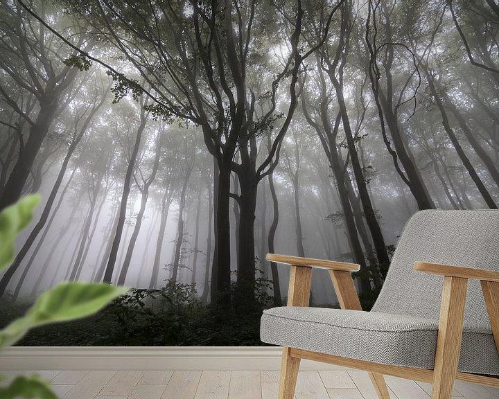 Beispiel fototapete: Gestalten Sie mit Bäumen im Nebel, Wald in den Balkan von Ger Beekes