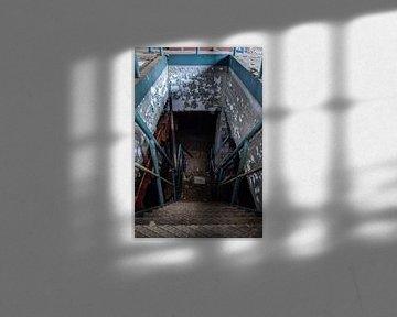 Into the basement van Thomas van de Vosse