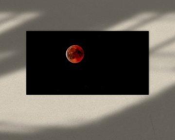 bloodmoon von Mark Zanderink