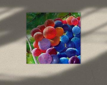 Grapevine van Thomas Suske
