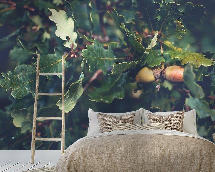 Sfeerimpressie behang: Rijpe bruine eikels tussen de groene eikenbladeren van Fotografiecor .nl