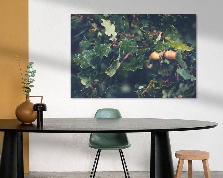 Sfeerimpressie: Rijpe bruine eikels tussen de groene eikenbladeren van Fotografiecor .nl