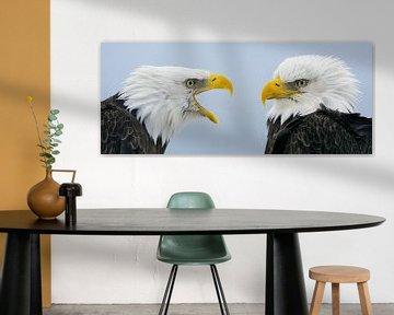Amerikaanse Zeearend Dubbelportret van Harry Eggens