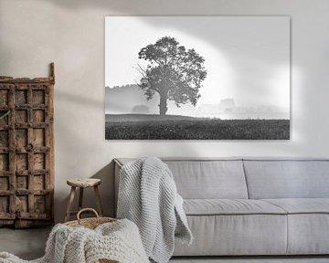 De vogel de boom von Angelique van Waarde