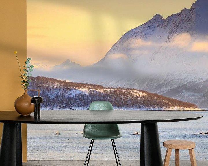 Sfeerimpressie behang: Dolfijnen in een fjord van Sander Meertins