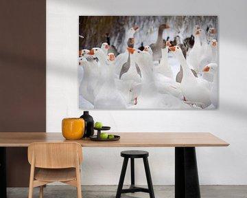 Winter tafereel ganzen van Lydia Van de Kuilen