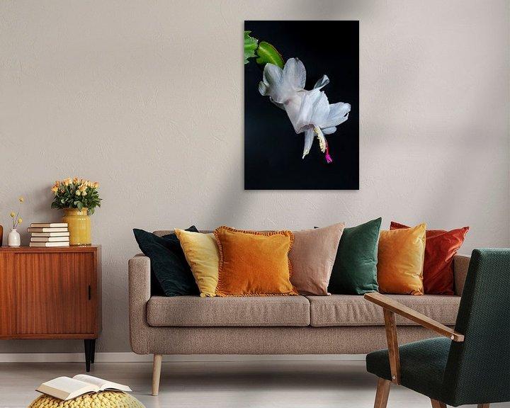 Sfeerimpressie: Lid cactus wit van Henry Nijen Twilhaar