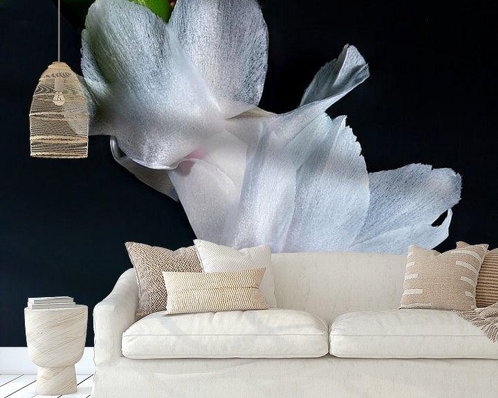 Sfeerimpressie behang: Lid cactus wit van Henry Nijen Twilhaar