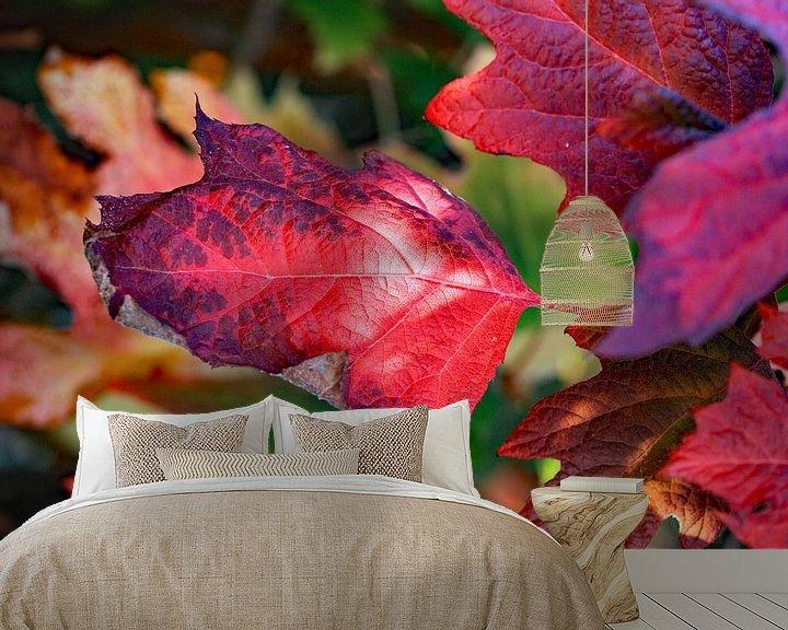 Sfeerimpressie behang: Rode herfstkleuren van Ludo Verhoeven