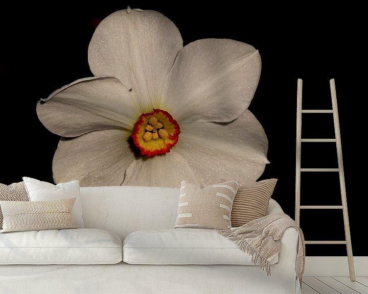 Beispiel fototapete: Narcis von Sven Zoeteman