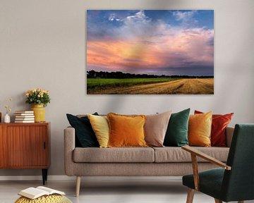Kleurrijk landschap drenthe van Fokje Otter