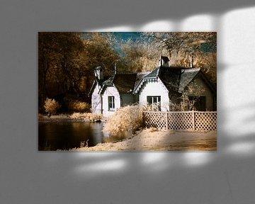 Duck Island Cottage van Helga Novelli