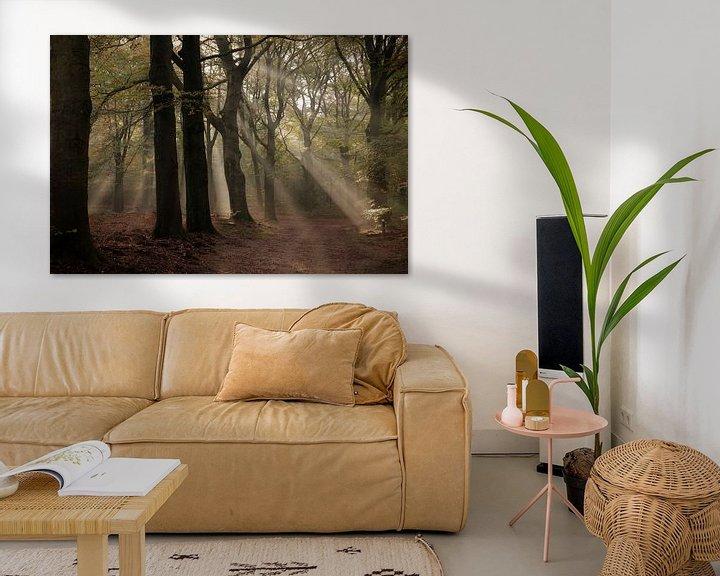 Sfeerimpressie: Herfst sfeer van Rob De Jong