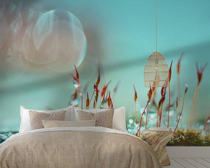 Sfeerimpressie behang: Muursterretjes met kleur van Teuni's Dreams of Reality